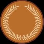 Bronze - GTConnections.COM